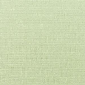 Sunbrella 5419-0000 Canvas Celadon Indoor/ Outdoor Fabric