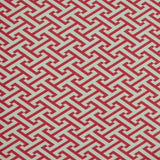 Cross Section Raspberry Decorator Fabric by PK Lifestyles, Outdoor, P/K Lifestyles,  Savvy Swatch