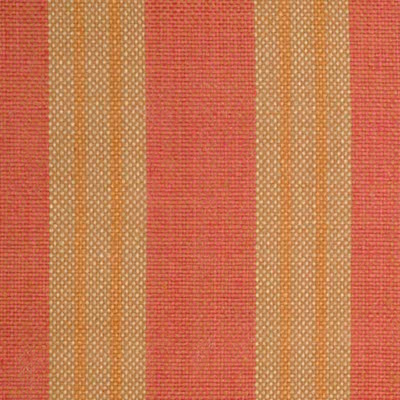 Funtime Coral Decorator Fabric by Stanford Furniture, Upholstery, Drapery, Home Accent, Outdoor, Standford,  Savvy Swatch