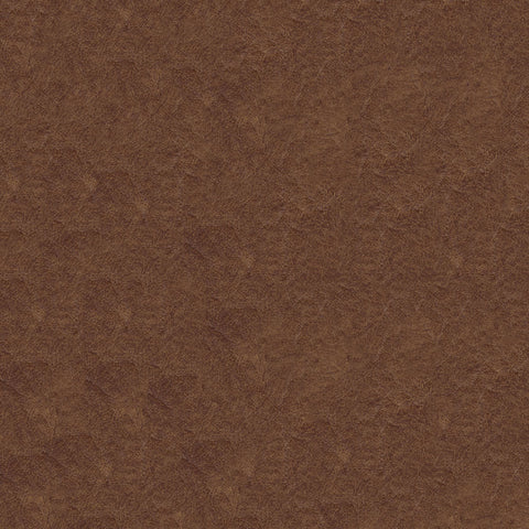 Gaucho 888 Desert Sand Fabric, Upholstery, Drapery, Home Accent, J Ennis,  Savvy Swatch