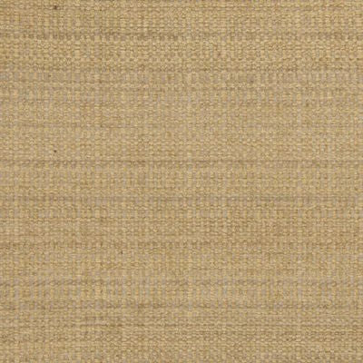 204251 Sand Decorator Fabric by Greenhouse