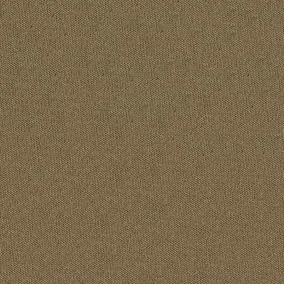 Journey 8006 Cinammon Brown Decorator Fabric by Vision Fabrics J Ennis