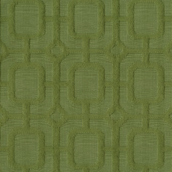 Terrace 2003 Grass Decorator Fabric by J. Ennis Visions