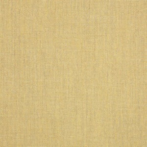 Sunbrella 48082-0000 Spectrum Almond Indoor Outdoor Decorator Fabric