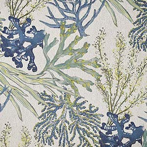 Coral Reef Oceanside Fabric, Upholstery, Drapery, Home Accent, Savvy Swatch,  Savvy Swatch