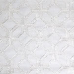 Barraud Emrbroidery Cloud Fabric Greenhouse B6382 Cloud White Medallion Fabric