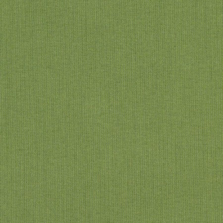 Sunbrella 48022-0000 Spectrum Cilantro Indoor / Outdoor Fabric, Upholstery, Drapery, Home Accent, Outdoor, Sunbrella,  Savvy Swatch