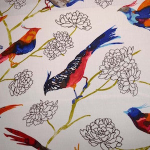 P Kaufmann Take Flight Firecracker Fabric