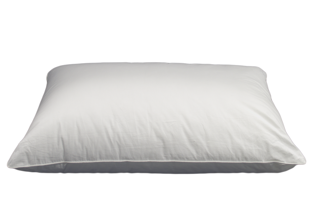 Comfort Plus Pillows Queen 20x30 in White