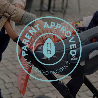 Swandoo Albert i-Size Car Seat Review