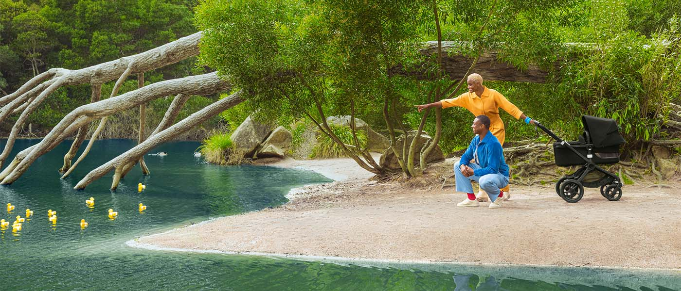 bugaboo collection