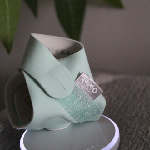 Owlet review