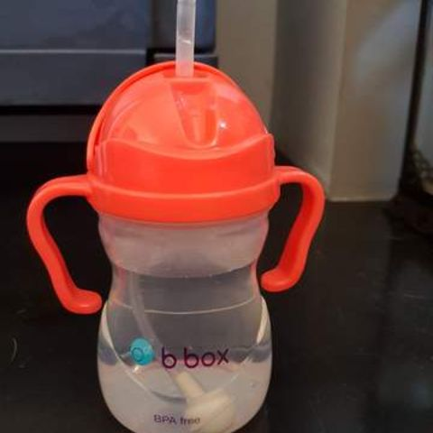 Parent Approved Review = B.box Sippy Cup 3