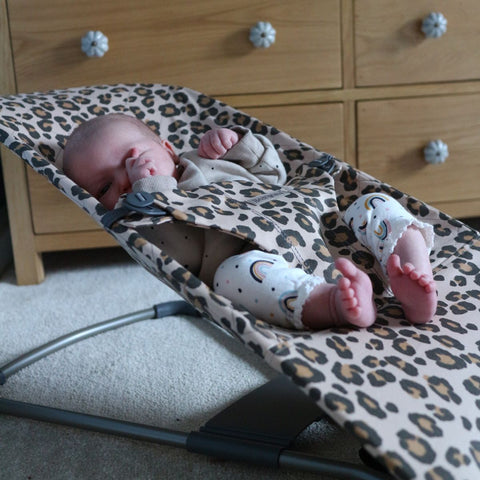 BabyBjorn Baby Bouncer Bliss Review