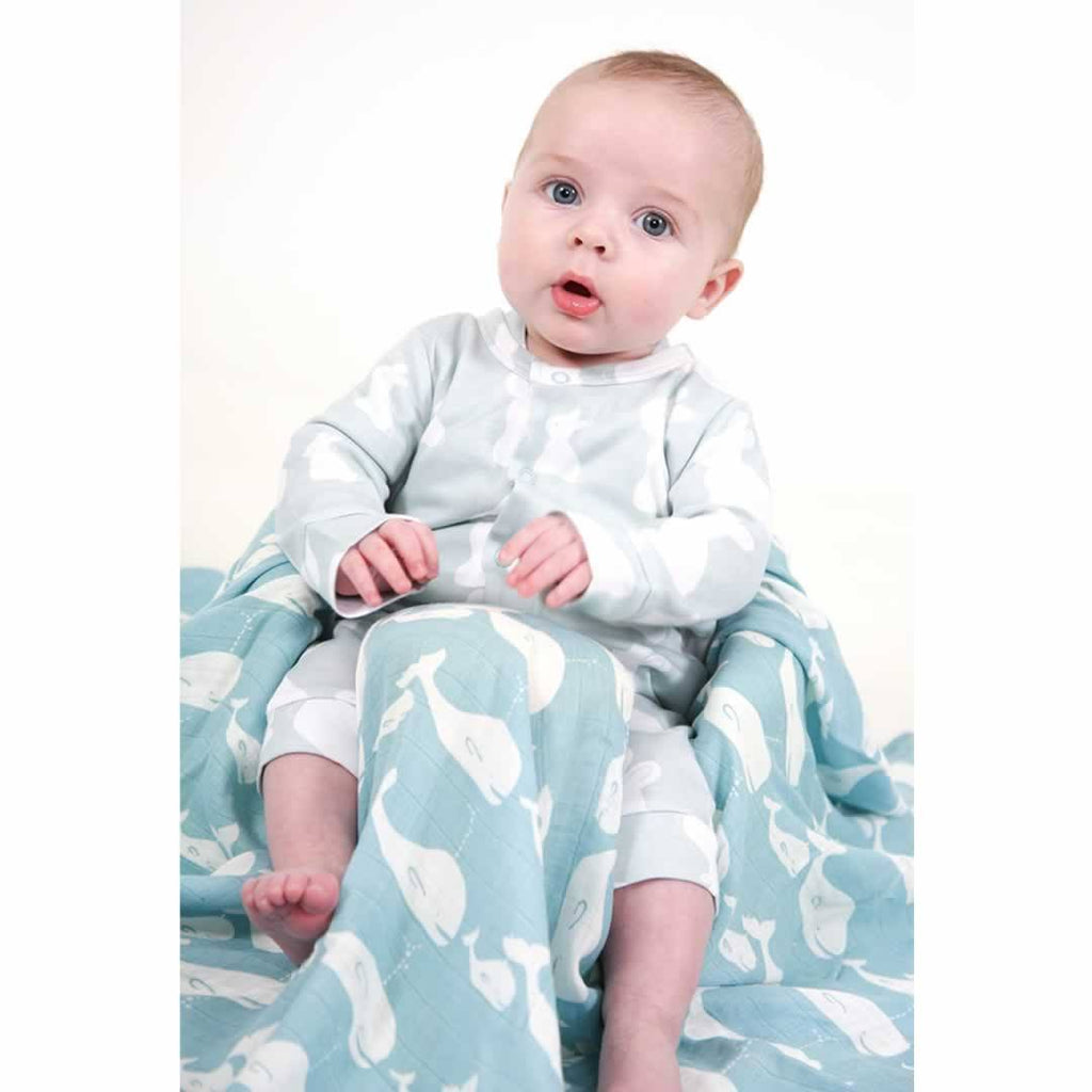Bambini & Me Swaddle - Whale Lifestyle
