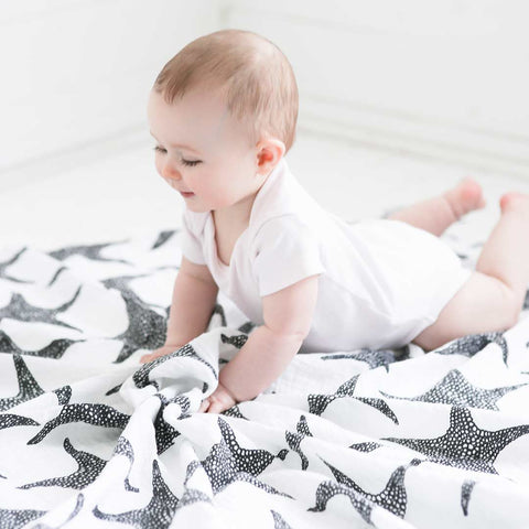 Etta Loves XL Muslin 0-4m - Starfish-Muslin Squares-Starfish- Natural Baby Shower