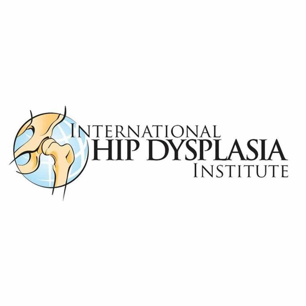 International Hip Dysplasia Institute Ergobaby Original Carrier - Dewdrop