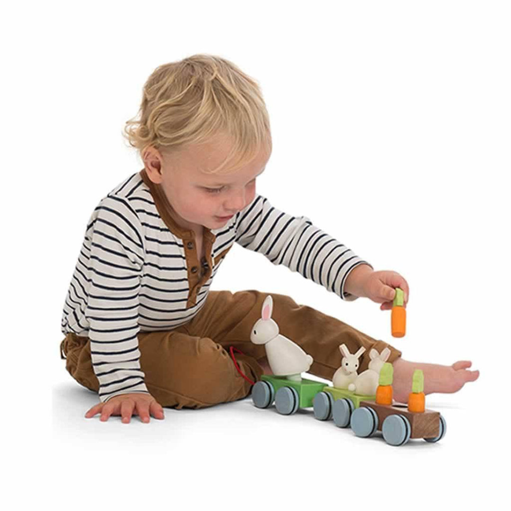 Le Toy Van - Petilou Bunny Train-Sorting & Stacking Toys- Natural Baby Shower