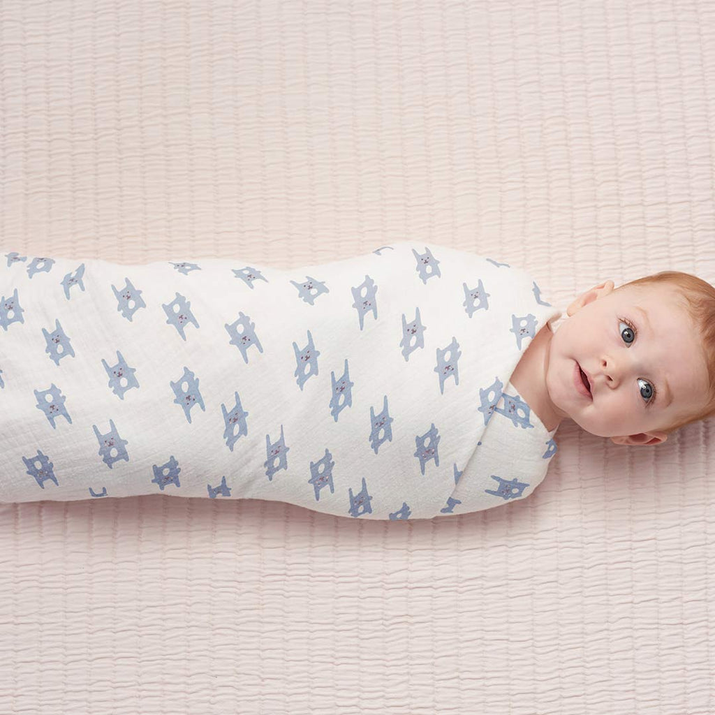 aden by aden + anais Flannel Swaddles - Bunny Blue - 2 Pack-Swaddling Wraps- Natural Baby Shower
