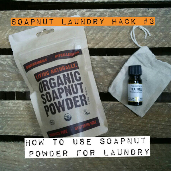 soapnut powder for laundry