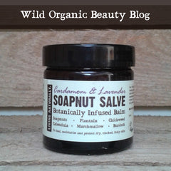 vegan herbal healing salve with organic soapnuts burdock plantain calendula marshmallow chickweed