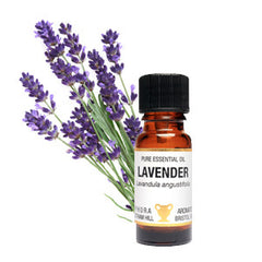 Lavender essential oil for soapnut laundry