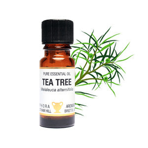 tea tree essential oil for soapnut laundry
