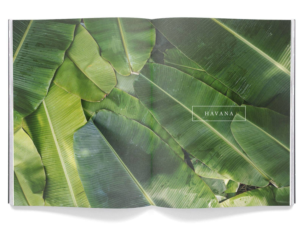 Magazine - Volume 3: Havana (Wholesale)