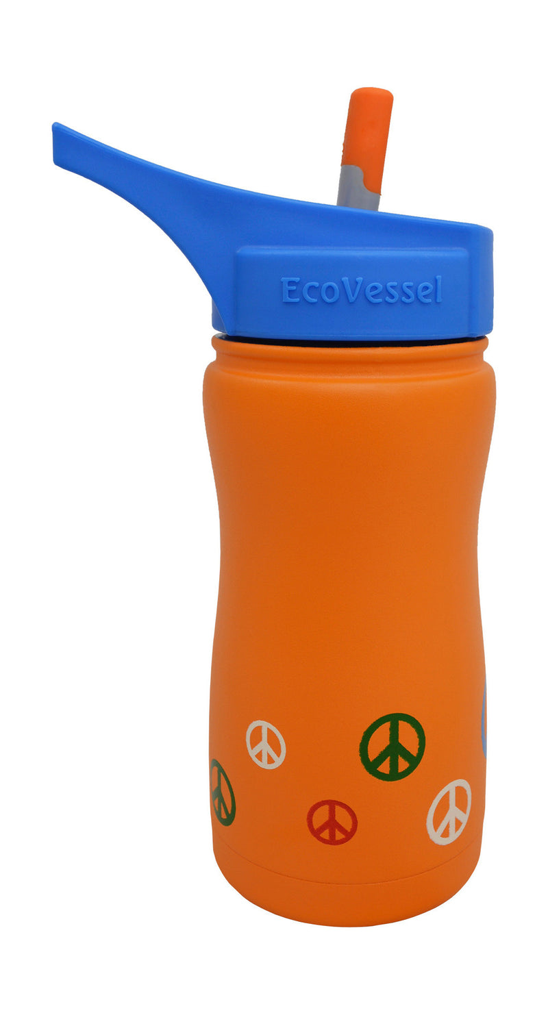 EcoVessel Frost Kids Insulated Bottle w/ Straw Top - 13 oz.