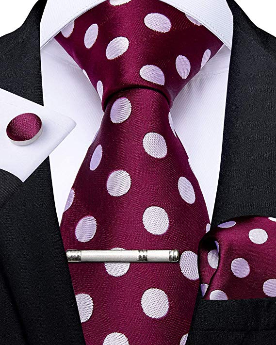 Maroon and White Polka Dot Necktie Set-DBG477
