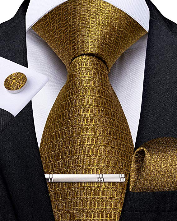 Gold Silk Necktie Set-DBG546