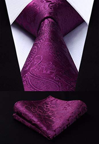 Eggplant Paisley Wedding Necktie Set-HDN311