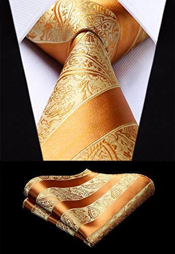Artisan Gold Paisley Striped Necktie Set-HDN314