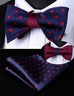 Navy Blue and Red Silk Bow Tie Set HDN4RS