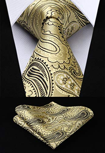 Gold and Black Paisley Silk Necktie Set HDN508