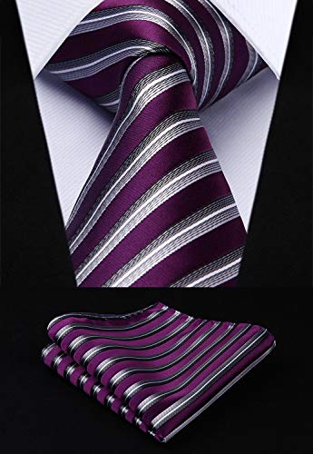 Purple and Silver Silk Necktie Set HDN5097