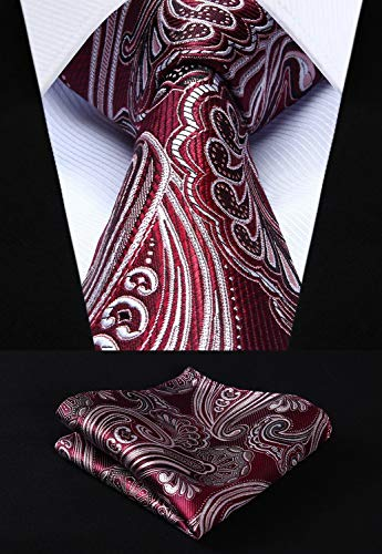 Burgundy and Gray Paisley Necktie Set HDN511