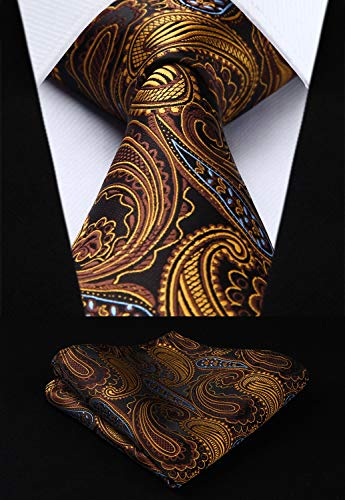 Gold Brown Blue Paisley Necktie Set HDN512