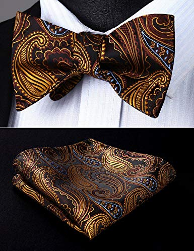 Brown and Gold Silk Bow tie Set HDNX06