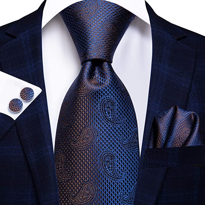 Blue and Brown Paisley Print Necktie Set-LBWH652