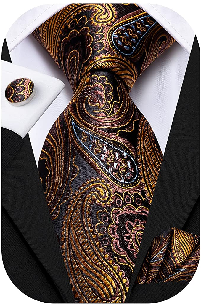 Brown Gold and Blue Paisley Tie Set-LBWH654
