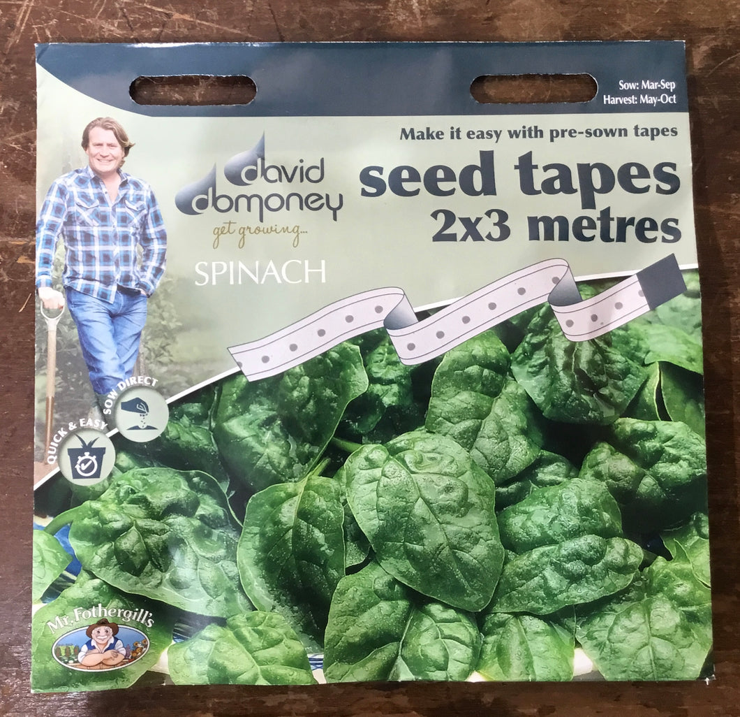 Spinach Samish F1 seed tape 2x3 metres - David Domoney Vegetables