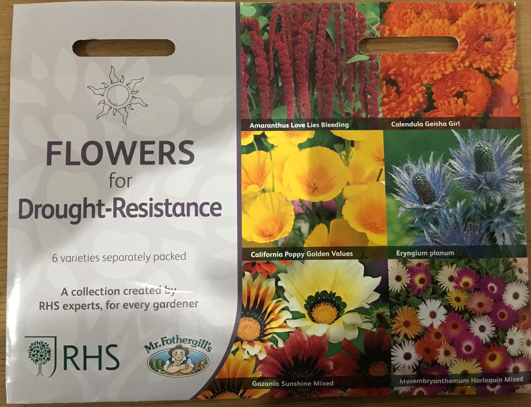 Flowers for drought-resistance  - RHS Flower Collection