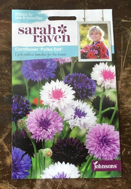Cornflower 'Polka Dot' - Sarah Ravens Flower Seeds