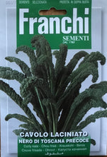 Load image into Gallery viewer, Franchi Cavolo Nero Curly kale