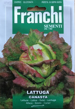 Load image into Gallery viewer, Franchi Lettuce canasta