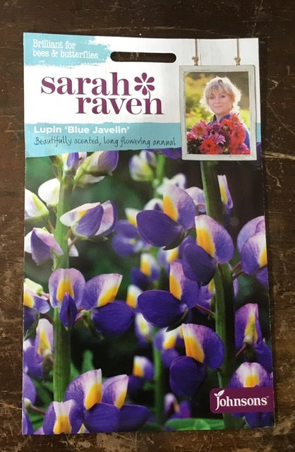 Lupin 'Blue Javelin' - Sarah Ravens Flower Seeds