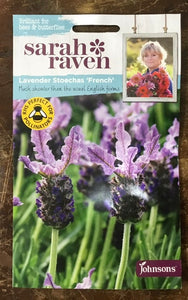 Lavender Stoechas 'French' - Sarah Ravens Flower Seeds