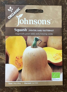Squash early butternut (winter) - Johnsons Organic Vegetables