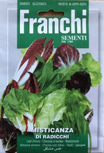 Load image into Gallery viewer, Franchi Leaf Chicory